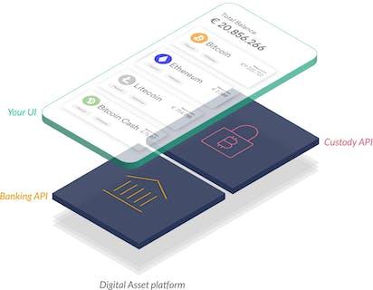 solaris digital assets